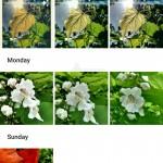 Google Android fotografije 8