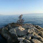 More i galebovi