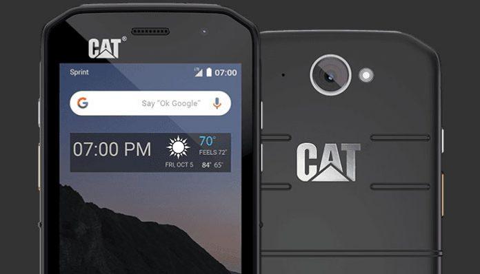 Cat S48c